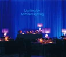 CENTERPEICE LIGHTING-ADMIRED-1