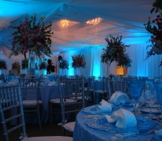 LED LIGHTING-COOL BLUE-ADMIRED