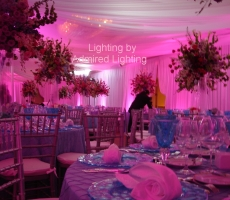 LED LIGHTING-PINK-ADMIRED